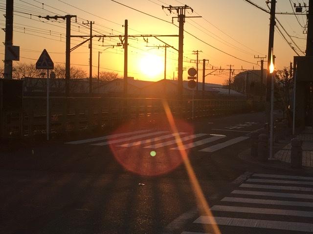 相模原で見る朝日