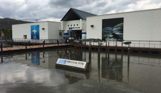 【家族でお出かけ】相模川ふれあい科学館アクアリウムさがみはら。河川の生き物に特化した、珍しい水族館。【神奈川県相模原市】